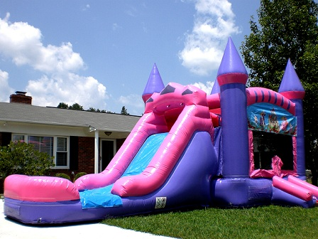 Princess waterslide bounce house rental